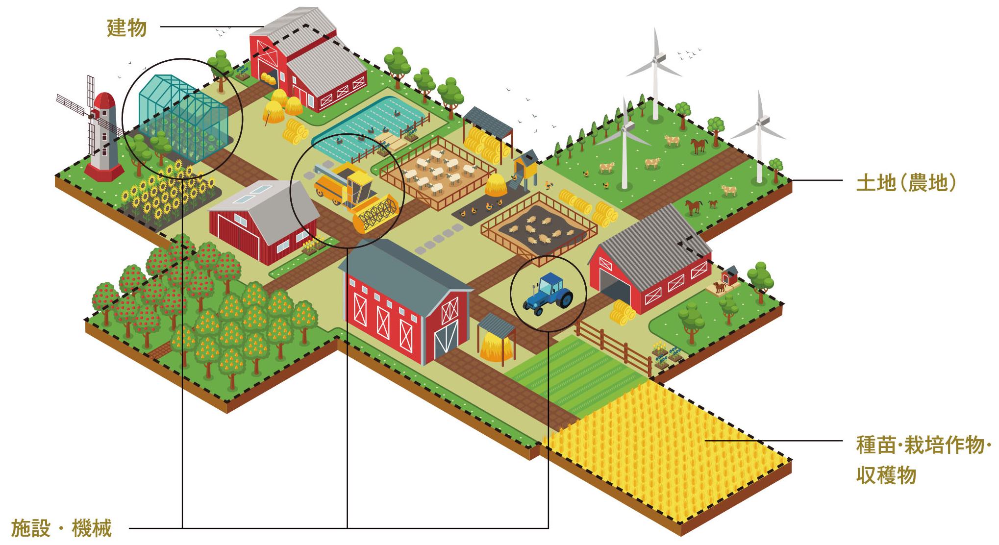 数字で測れる事業価値(農業)